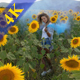 Girl with Colored Smoke in a Sunflower Field - VideoHive Item for Sale