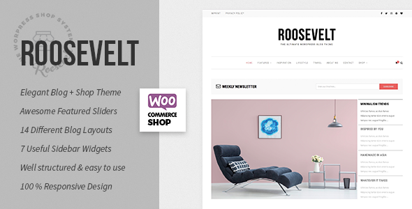 Roosevelt – WordPress Weblog &amp Shop Theme (Private)