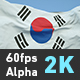 Flag Korean - VideoHive Item for Sale