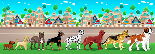 Collection of Purebred Dogs Aligned on the Town View - Animals Characters