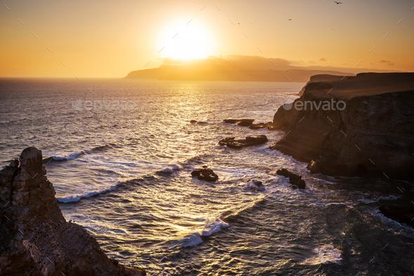 Paracas - Stock Photo - Images