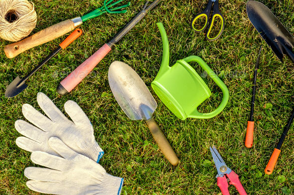 Gardening Tools And Watering Can On Grass Stock Photo By Haveseen
