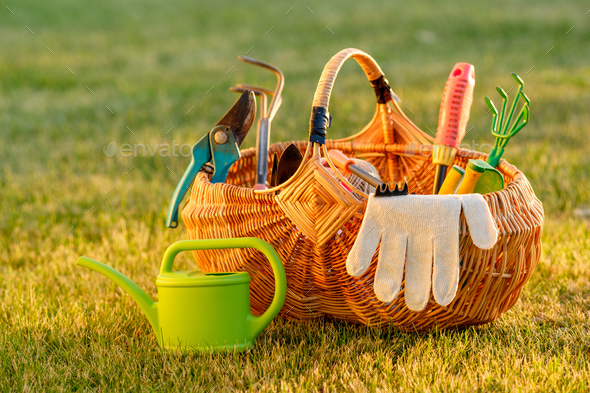 Gardening tools in basket and watering can on grass - Stock Photo - Images
