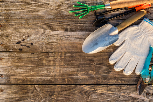 Gardening tools on wooden background - Stock Photo - Images
