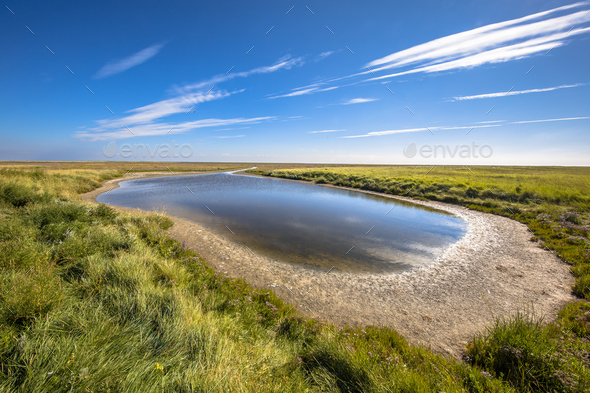Saltmarsh landscape Rottumeroog - Stock Photo - Images