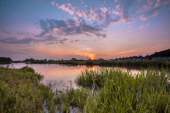 River forelands near Wageningen - Stock Photo - Images
