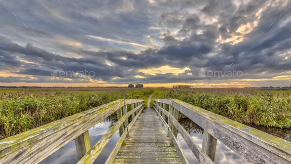 Wooden bridge on Walking track - Stock Photo - Images