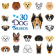 30 Dog Breeds Vector Collection - GraphicRiver Item for Sale