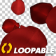Red Rose Petals - Falling Loop - VideoHive Item for Sale