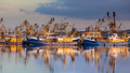 Fishery in Lauwersoog harbor