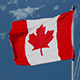 Canadian Flag Blowing In The Wind - VideoHive Item for Sale