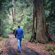 Man Walks On Dirt Road Through Forest - VideoHive Item for Sale