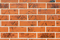 Brown texture tiles under brick - PhotoDune Item for Sale