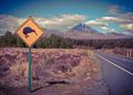 Kiwi sign in NZ landscape vintage toning
