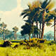 Panorama Of Mountains And Palm Forests