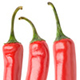 Collection of Isolated Peppers - GraphicRiver Item for Sale