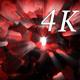 Inside Light 4K 05