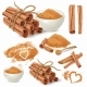 Cinnamon Sticks and Powder Vector Collection