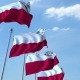 Row of Waving Flags of Poland Agaist Blue Sky