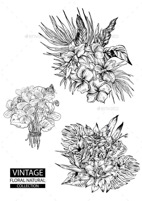 Floral Outline Coloring Vector Vintage Collections - Flowers & Plants Nature