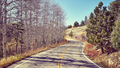 Vintage toned picture of a scenic road in autumn.