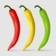 Vector Realistic Red, Yellow and Green Pepper
