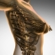 Anatomy of Woman Limphatic System