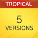 A Tropical House - AudioJungle Item for Sale