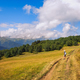 Woman hiker admiring mountains and meadows, Svaneti, Georgia - PhotoDune Item for Sale