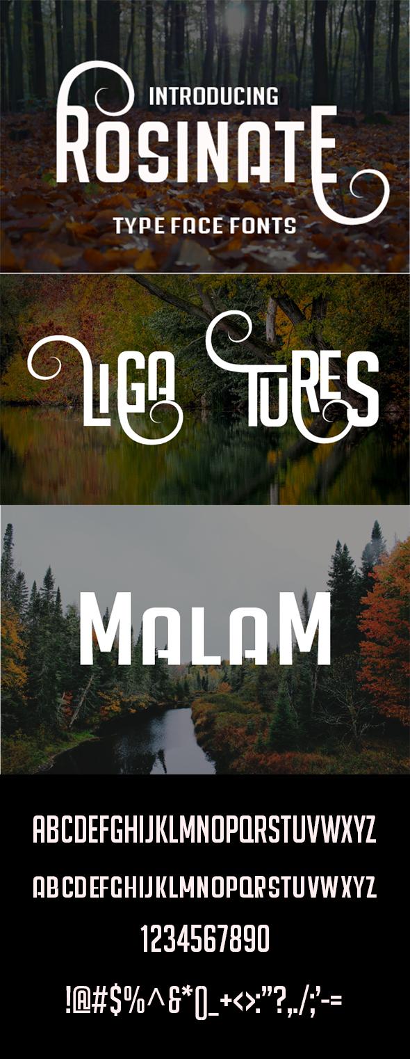 Rosinate - Sans-Serif Fonts