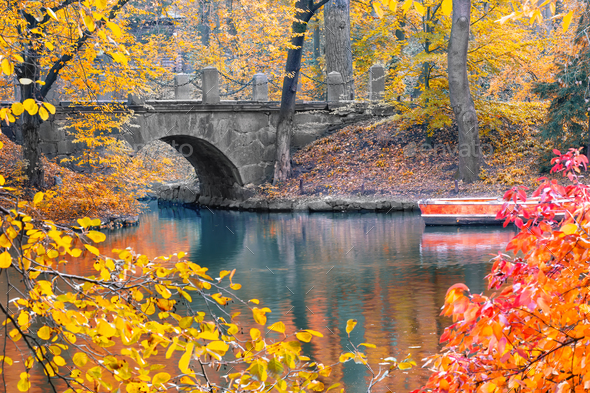 Stone bridge in the park in autumn - Stock Photo - Images