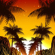 Palms Sunset - VideoHive Item for Sale
