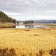 Yellowstone National Park in autumn, Wyoming, USA. - PhotoDune Item for Sale