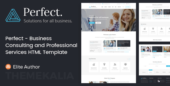 ThemeForest Perfect Business Consulting and Professional Services HTML Template 20629889