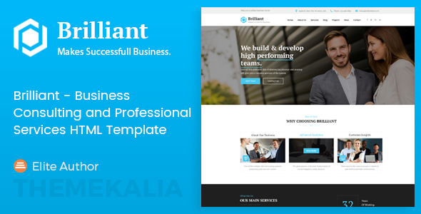 ThemeForest Brilliant Business Consulting and Professional Services HTML Template 20629939