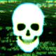 Skull Digital 6