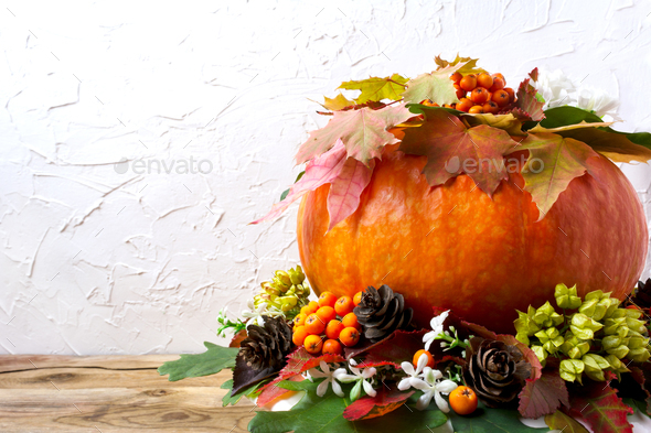 Fall table centerpiece with pumpkin and cones, copy space - Stock Photo - Images