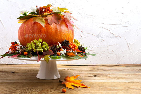 Thanksgiving table centerpiece with pumpkin, seeds and cones, co - Stock Photo - Images
