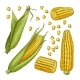 Different Sides of Corn