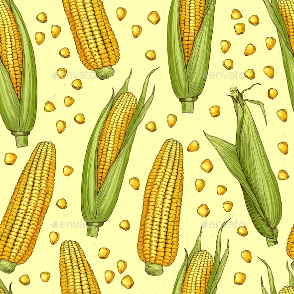 Vector Seamless Patterns with Illustration of Corn - Backgrounds Decorative