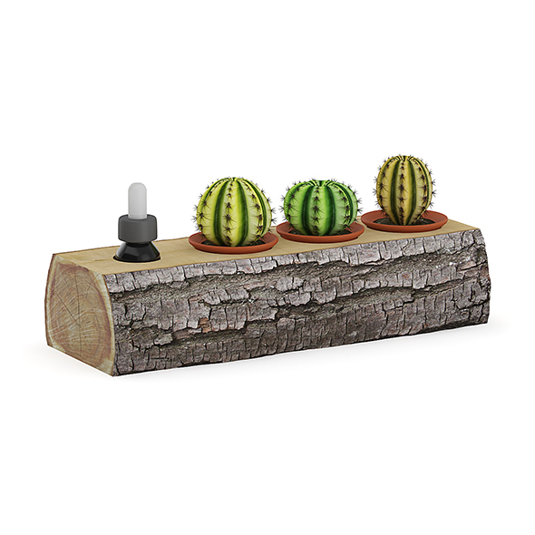 Tree Trunk with Cactuses - 3DOcean Item for Sale