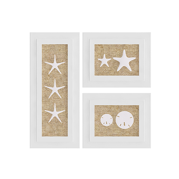 3DOcean Starfish Wall Decoration 20633536