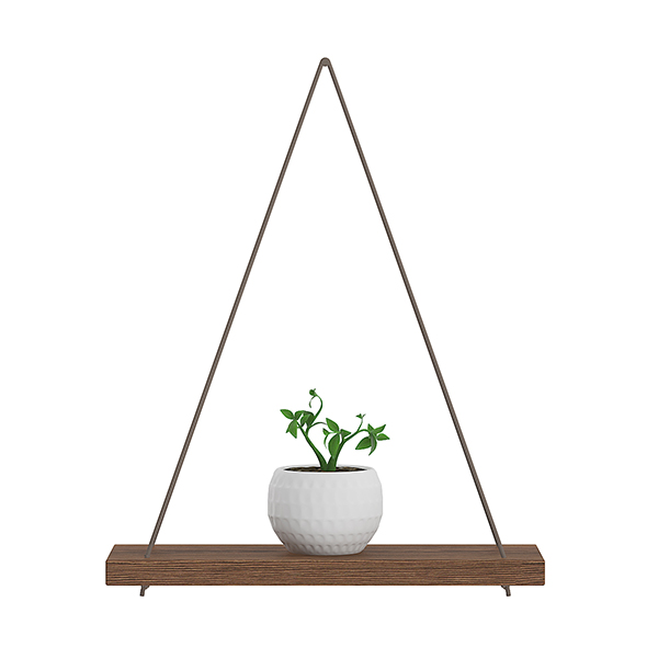 3DOcean Wall Shelf on the Rope with Small Plant 20633583