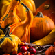 Pumpkin still life for Thanksgiving - PhotoDune Item for Sale