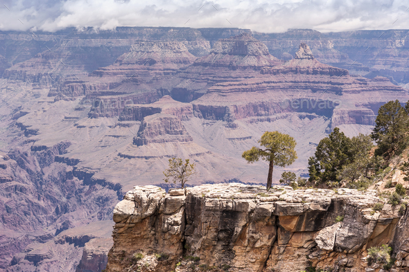 Sunny Day at Grand Canyon National Park, South Rim of View Point, Arizona, USA. - Stock Photo - Images