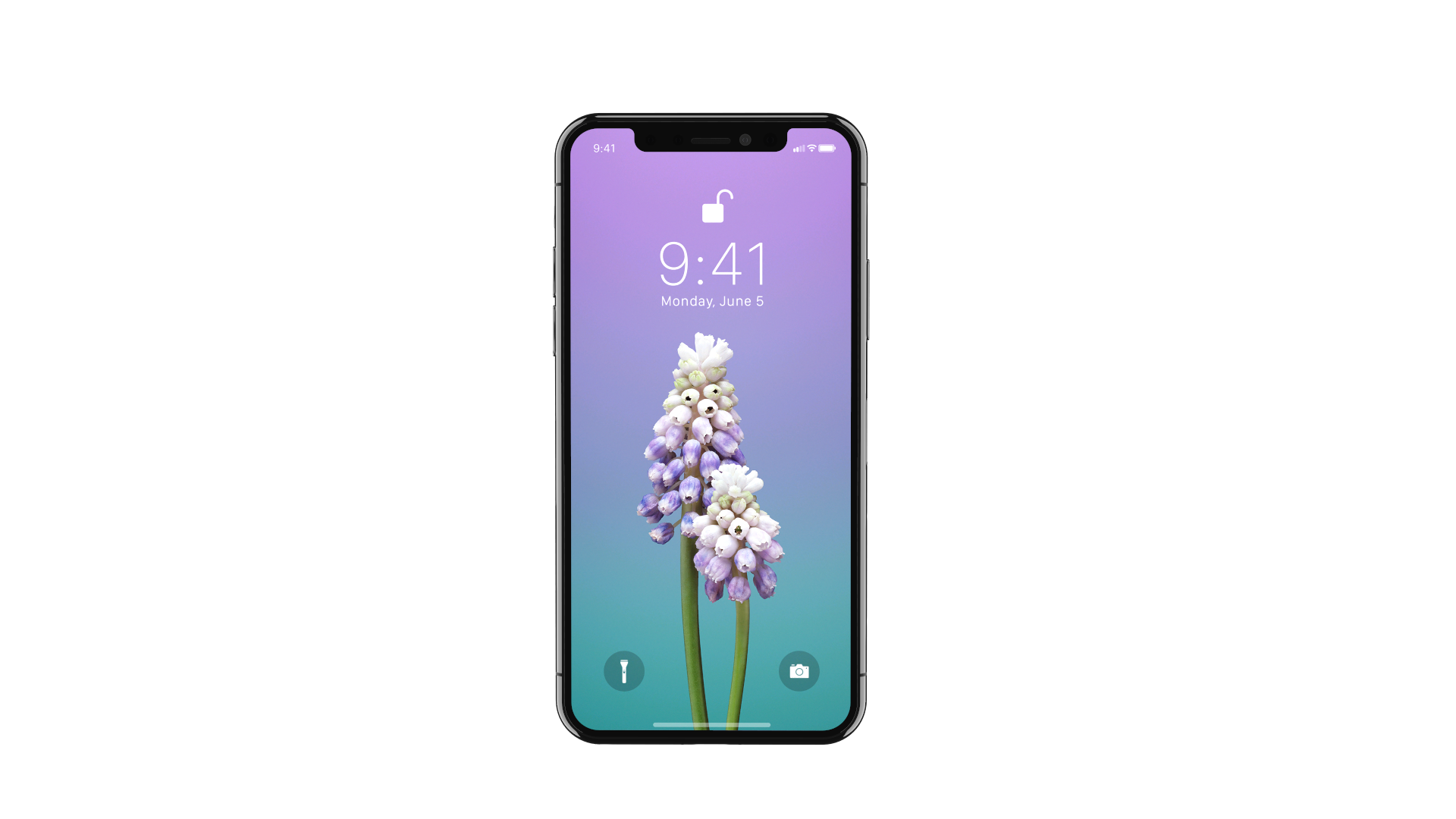 X Renders IPhone Lockscreen Flower Muscari