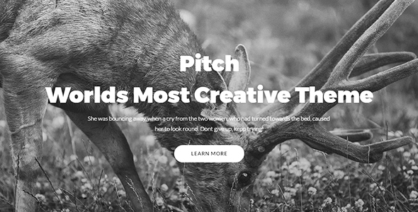 Pitch - Multipurpose Responsive Creative HTML5 Template - Creative Site Templates