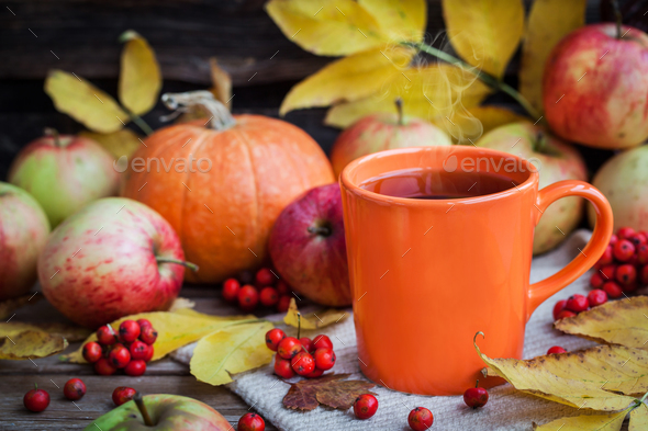 Orange mug on autumn background - Stock Photo - Images
