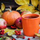 Orange mug on autumn background - PhotoDune Item for Sale