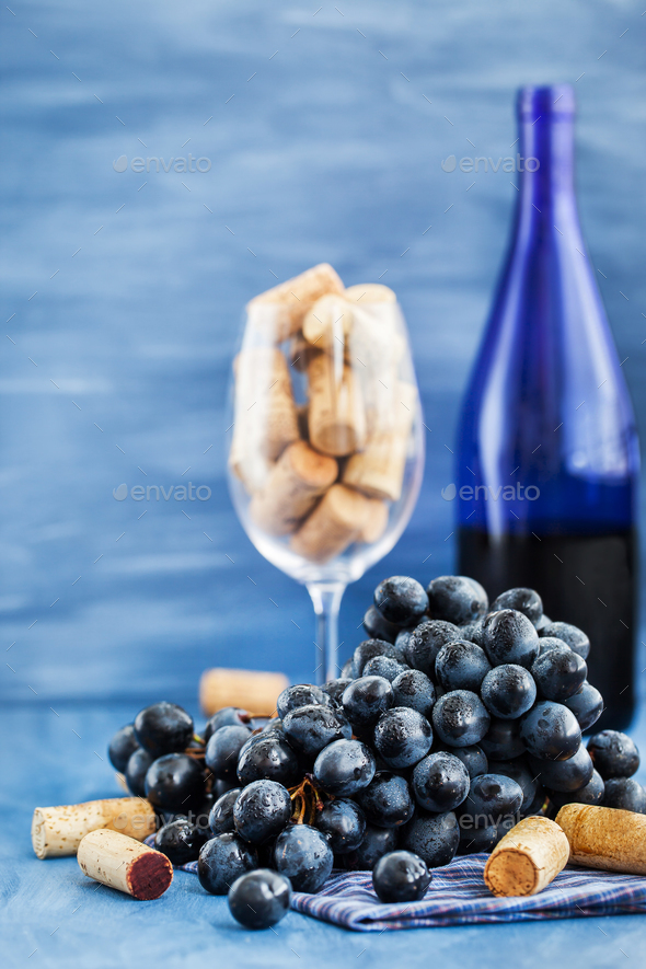Branch of purple grape and wine corks on gray - Stock Photo - Images